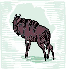 animated-buffalo-image-0080