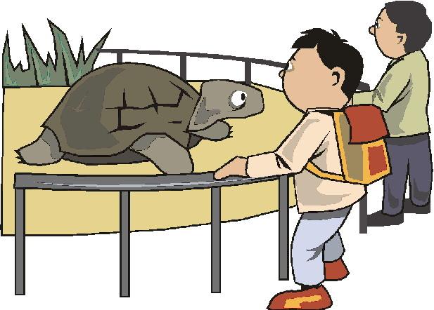 animated-zoo-image-0005