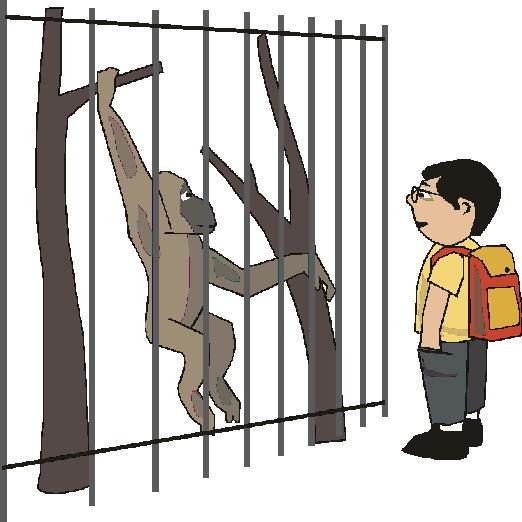 animated-zoo-image-0034
