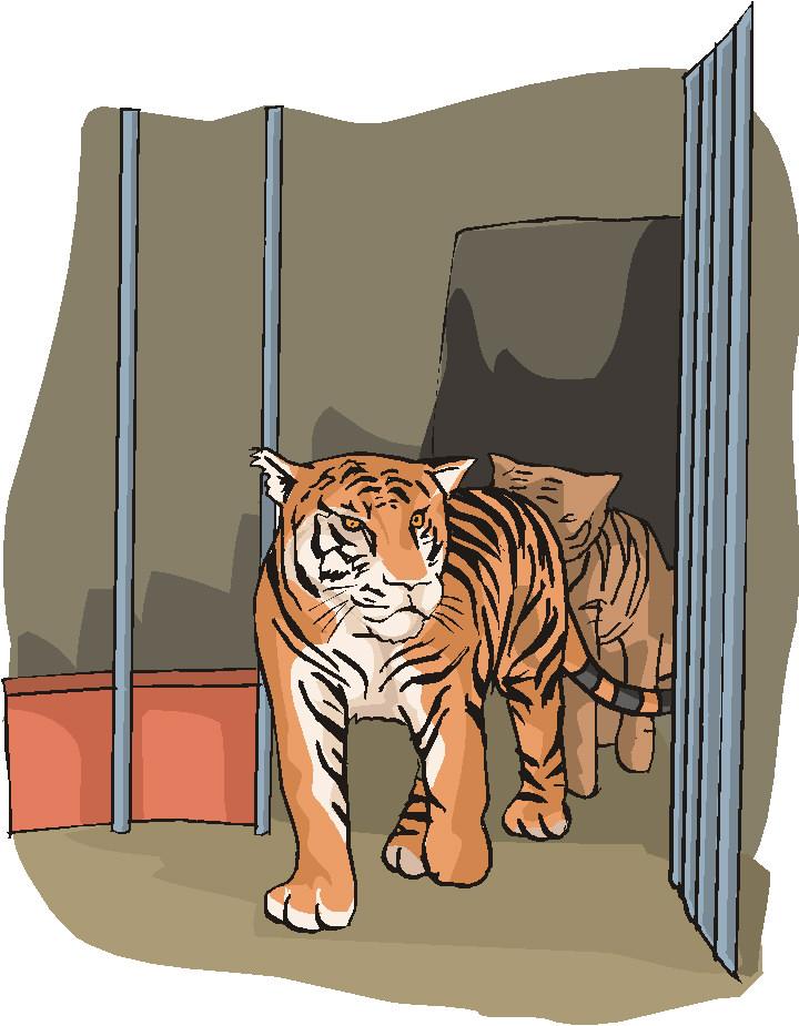 animated-zoo-image-0089