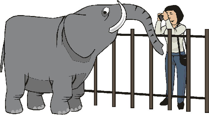 animated-zoo-image-0119
