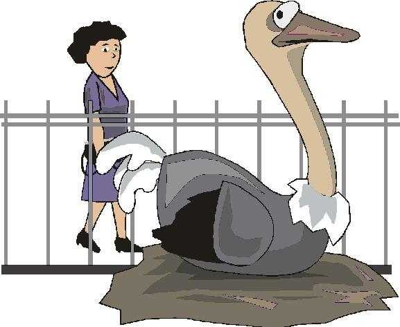 animated-zoo-image-0145
