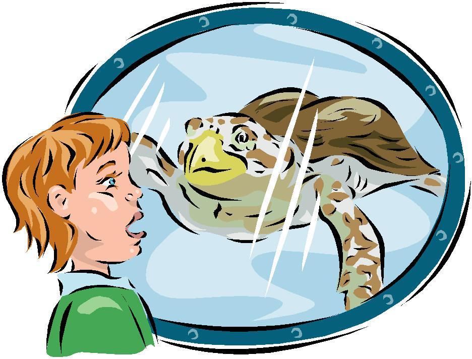 animated-zoo-image-0160