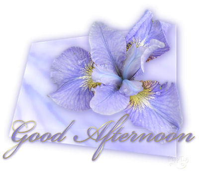 animated-good-afternoon-image-0014
