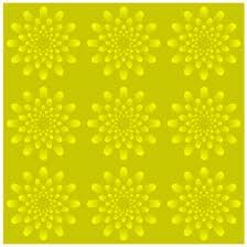 animated-illusion-image-0097