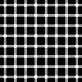 animated-illusion-image-0106