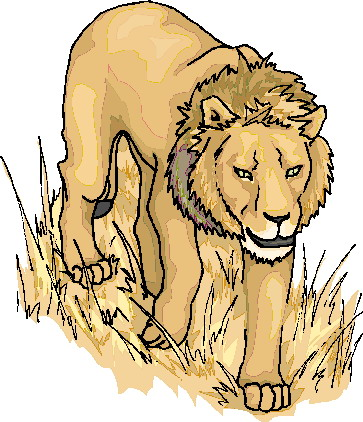 lions animated images gifs pictures animations 100 free