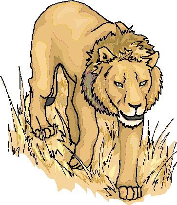 animated-lion-image-0099