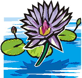 animated-water-lily-image-0002