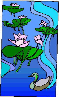animated-water-lily-image-0013