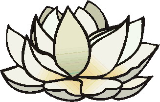 animated-water-lily-image-0017