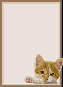 animated-nameplate-image-0005