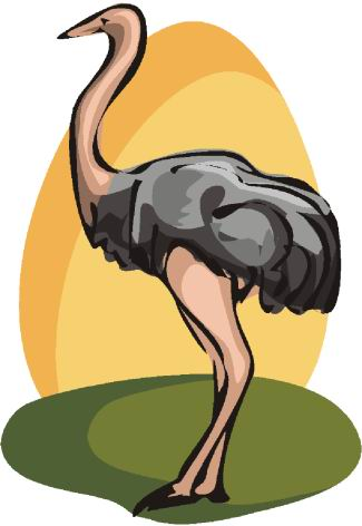 animated-ostrich-image-0006