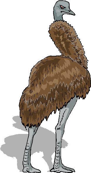 animated-ostrich-image-0008
