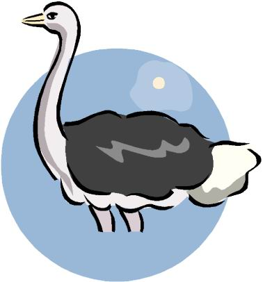 animated-ostrich-image-0015