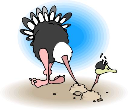 animated-ostrich-image-0017