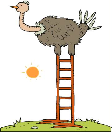 animated-ostrich-image-0025
