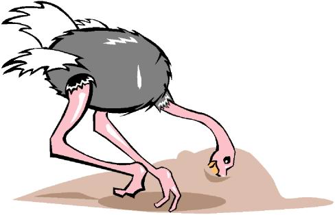 animated-ostrich-image-0028