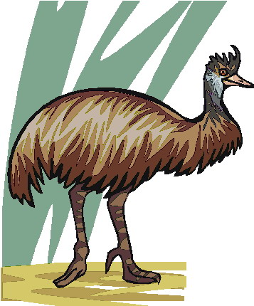 animated-ostrich-image-0034
