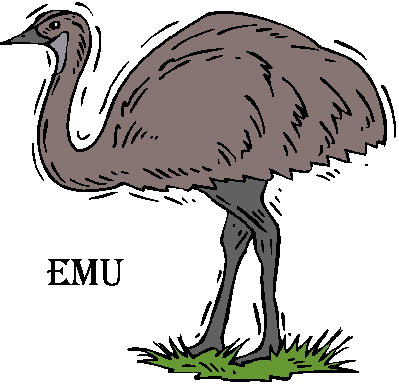 animated-ostrich-image-0036