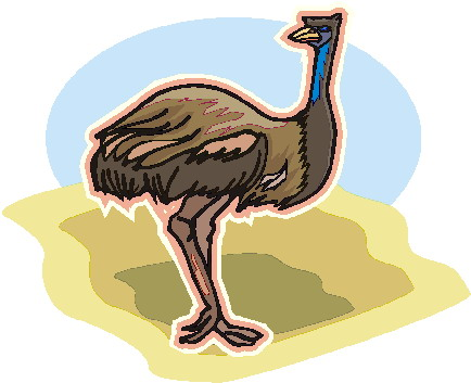 animated-ostrich-image-0038