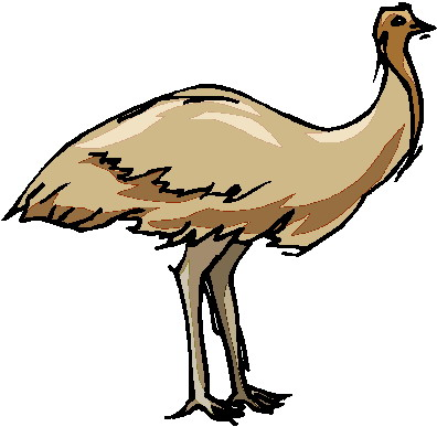animated-ostrich-image-0039