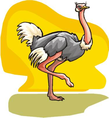 animated-ostrich-image-0041