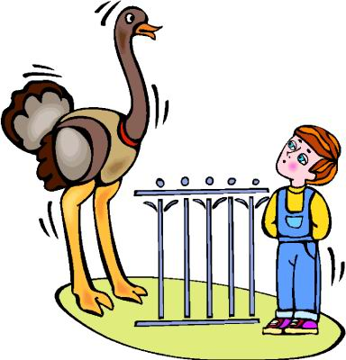 animated-ostrich-image-0044