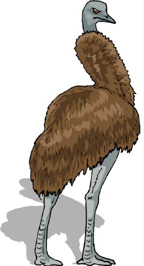 animated-ostrich-image-0049
