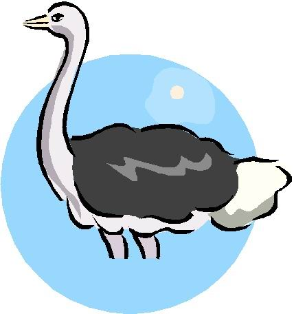 animated-ostrich-image-0064