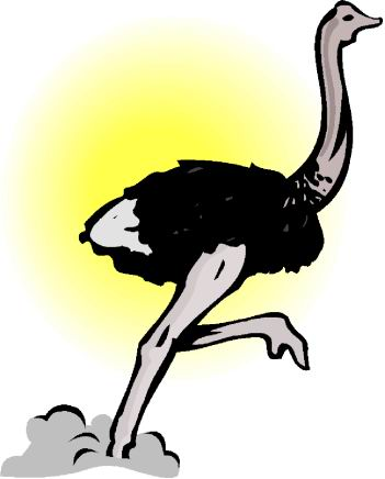 animated-ostrich-image-0066
