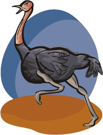 animated-ostrich-image-0075