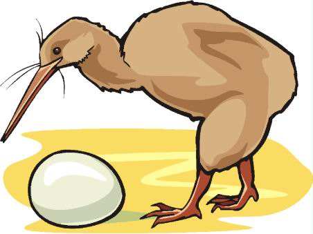 animated-ostrich-image-0077
