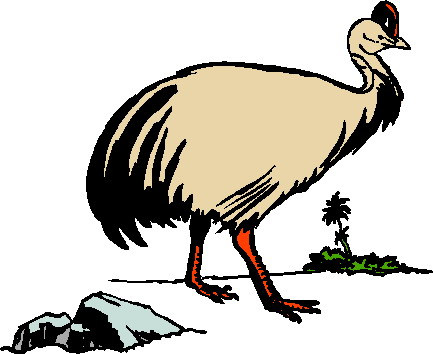 animated-ostrich-image-0083