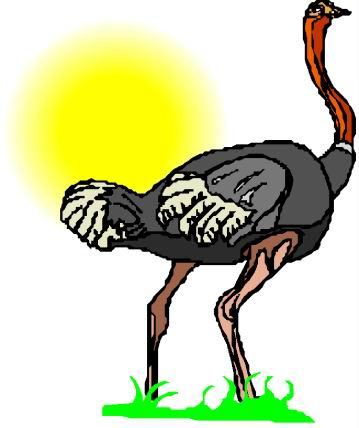 animated-ostrich-image-0086