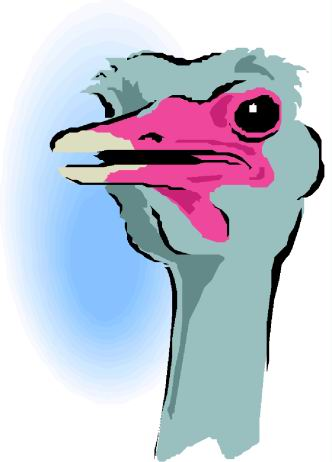 animated-ostrich-image-0088