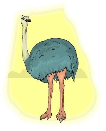 animated-ostrich-image-0091