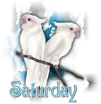 animated-saturday-image-0027