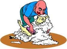animated-shepherd-image-0008