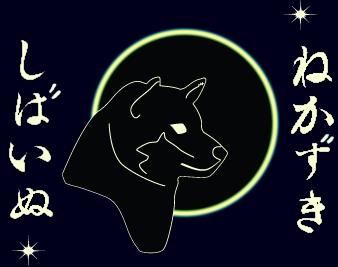 animated-shiba-image-0047
