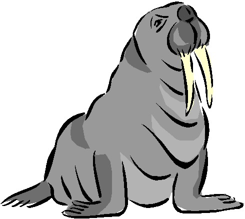 animated-walrus-image-0010