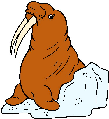 animated-walrus-image-0012