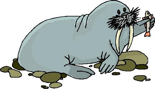 animated-walrus-image-0026