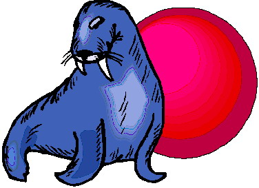 animated-walrus-image-0027