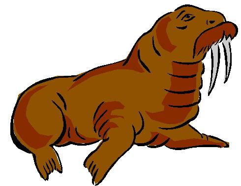 animated-walrus-image-0030