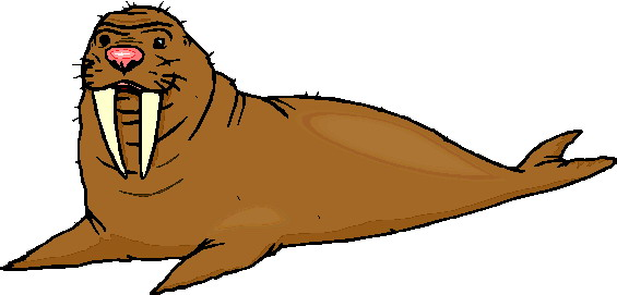 animated-walrus-image-0036