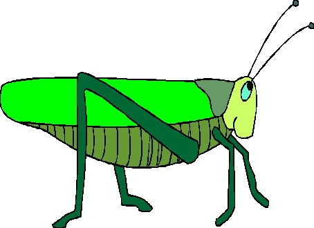 animated-grasshopper-image-0007
