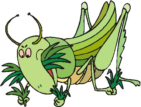 animated-grasshopper-image-0009