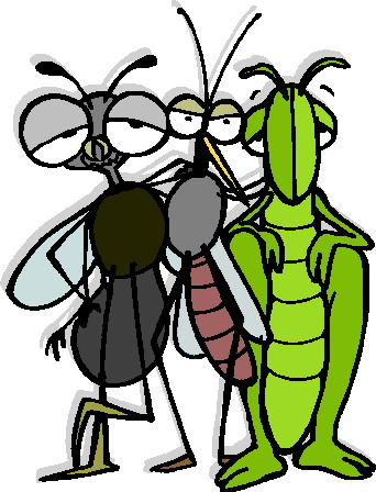 animated-grasshopper-image-0026