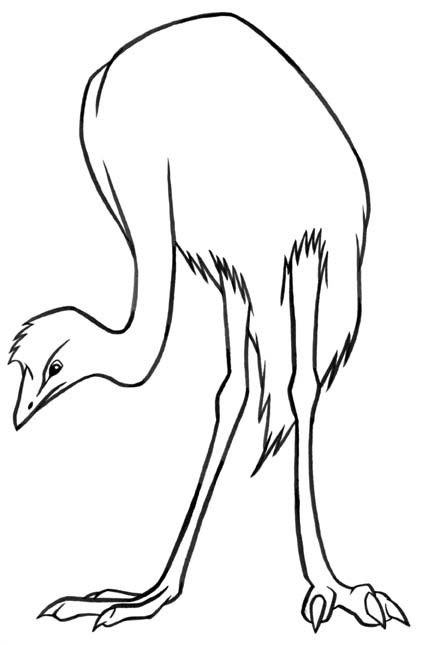 animated-coloring-pages-bird-image-0037